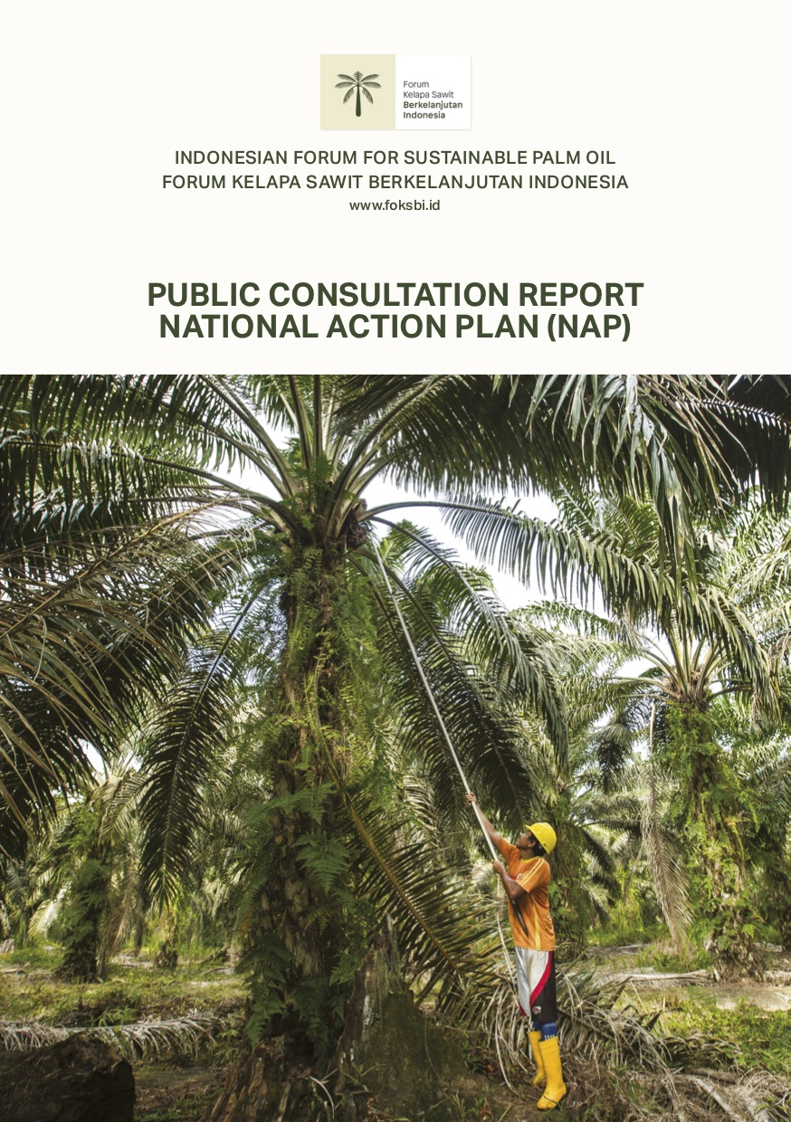 FoKSBI Releases Report of National Action Plan Public Consultation